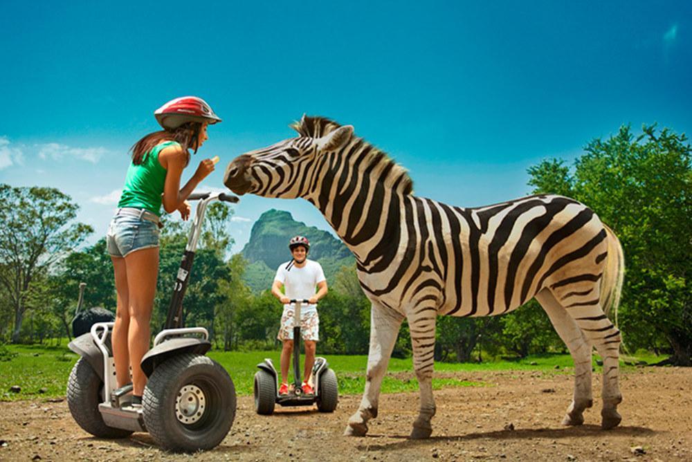 Arbeite mit Tieren in einem Safarie Zoo in Mauritius